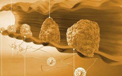 Quando la genetica tumorale è molto complicata: il cancro del colon retto
